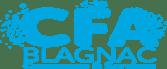 Info métiers : Les apprentis ouvrent leur CFA ! CFA de Blagnac 1